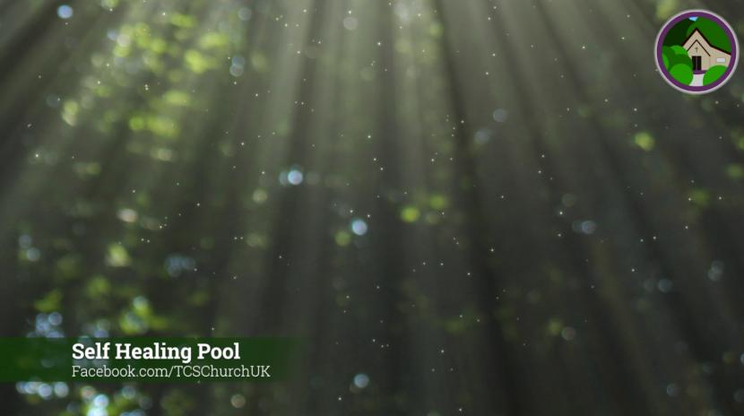 Self Healing Pool